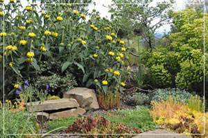 Garden and landscape design services